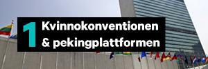 Kvinnokonventionen & pekingplattformen